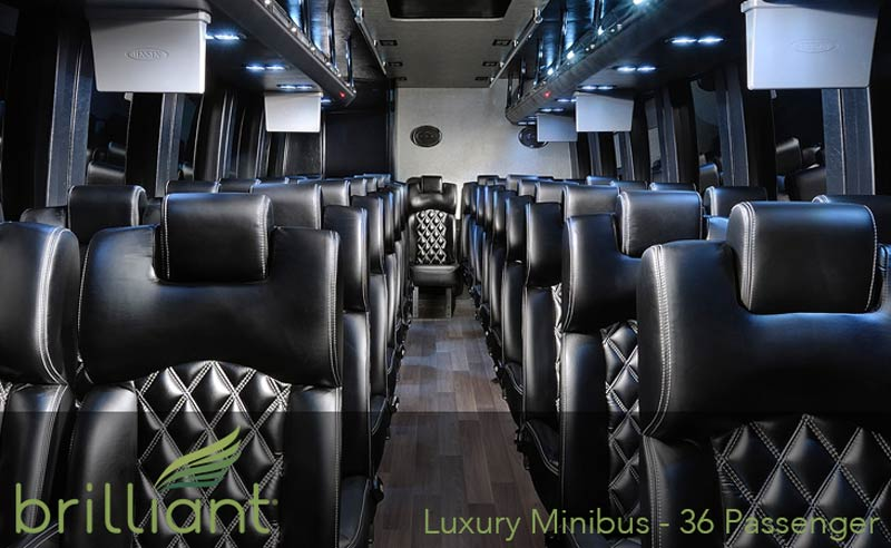 Luxury Bus NYC to DC
