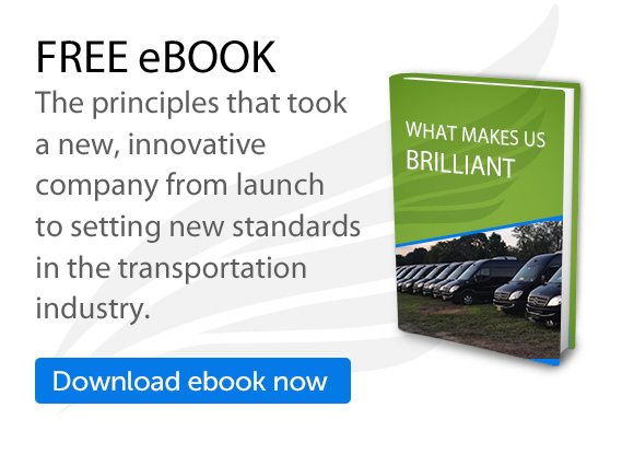 Free eBook: What Makes Us Brilliant